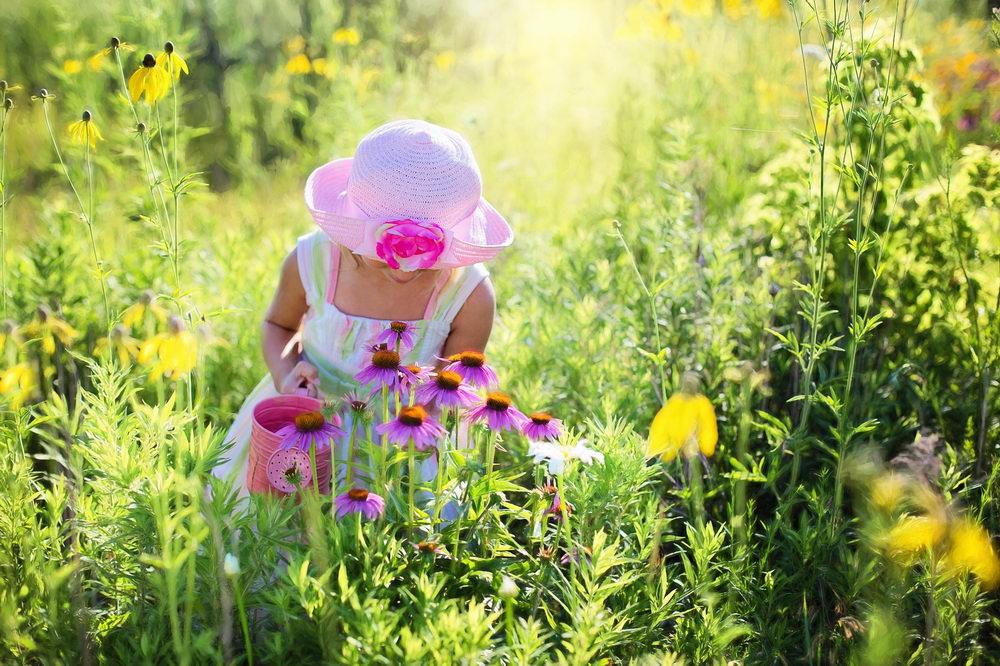 Péče o květiny na rozkvetlé přírodní zahradě
