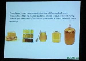 Mezinárodní apiterapeutická konference Kdyně, Apiterapie v první pomoci a při neštěstích,  Moisés Asís, JD, PhD, MSW