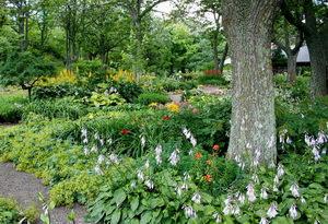 Květnatá zahrada, péče