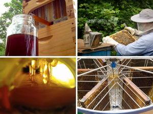 flow hive, tradiční medobraní Potštejn, Pleva