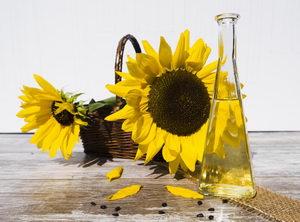 slunečnicový olej v kosmetice, slunečnicová semínka, slunečnice