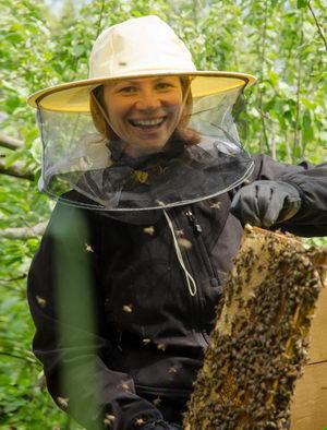 prohlídka úlu