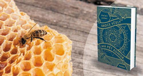 Kniha Kniha Srdce včely má pět komor, Helen Jukes, Pleva