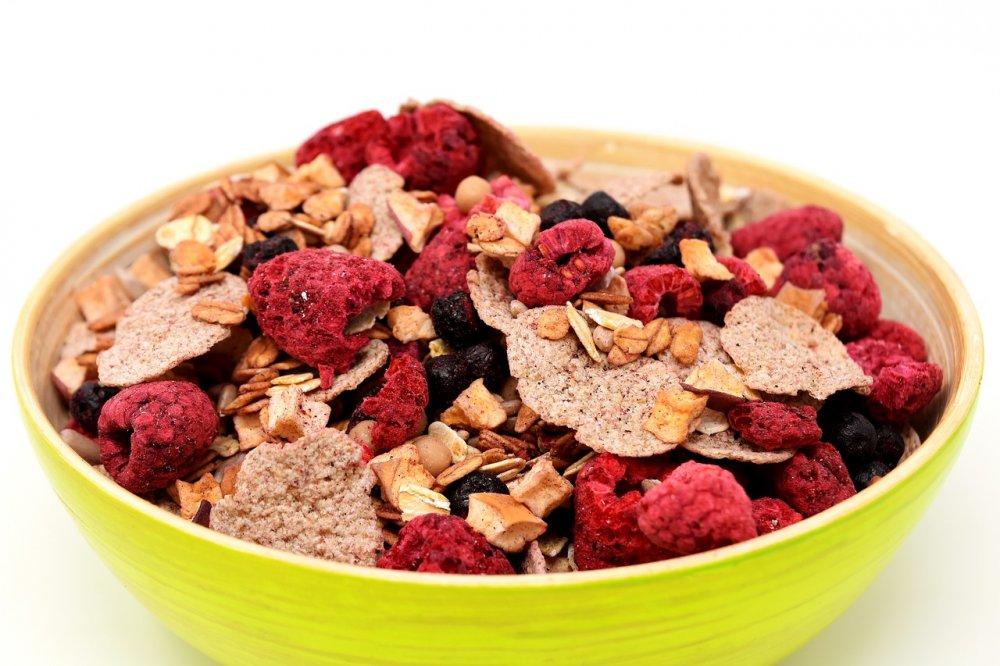 sušení potravin lyofilizací, ovoce