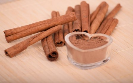 Honey with cinnamon to lose weight, relax and lower the cholesterol level