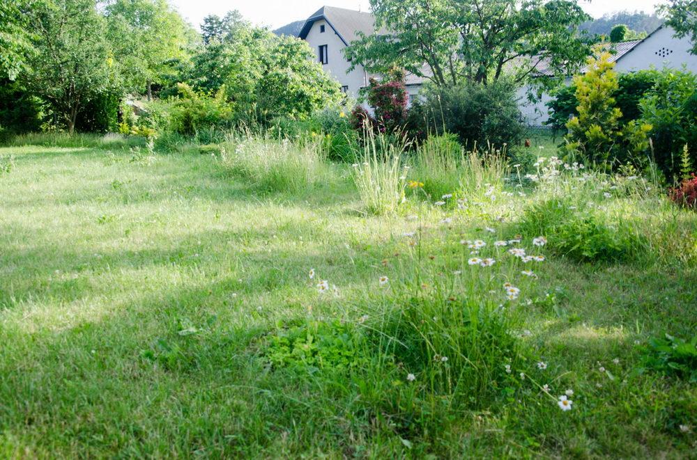 jak na rozkvetlou zahradu