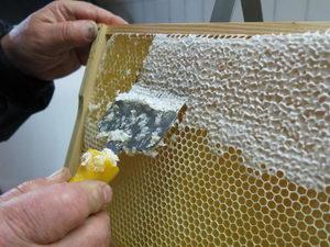 Odvíčkování medové plástve