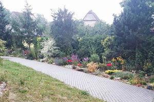 úprava zahrady pro včely a další hmyz, pleva