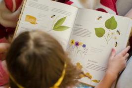 jak zvládnout karanténu s dětmi, zabavte děti, kniha pro děti