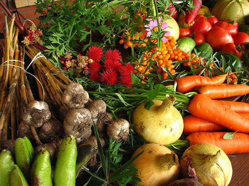 zelenina článek detoxikace