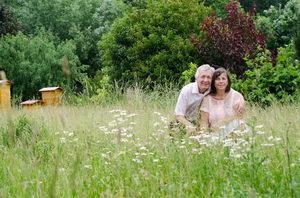 louka na zahradě, domov pro hmyz