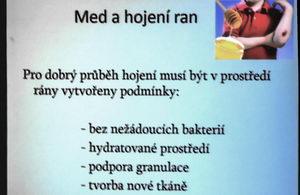 Mezinárodní apiterapeutická konference Kdyně,Terapeutické využití potencovaného medu při léčbe ran, MVDr. Zdeněk Klíma
