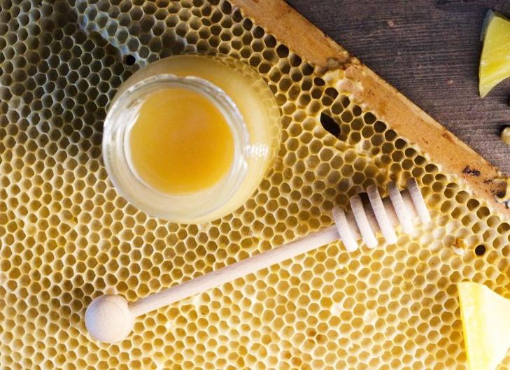 výroba domácí medoviny, vyroba medoviny, med pro výrobu medoviny