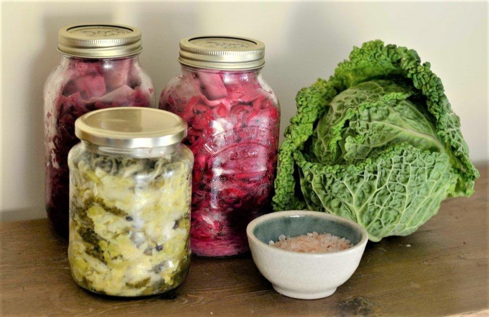 fermentace ovoce a zeleniny, návod, recepty