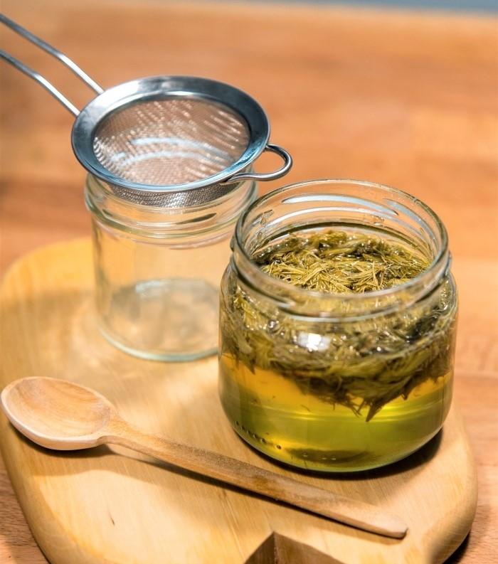 sirup ze smrkových výhonků a medu