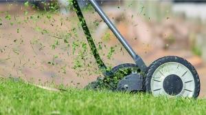 sekání trávníků, sucho, málo vody