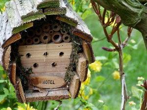 hmyzí hotel, hotel pro hmyz