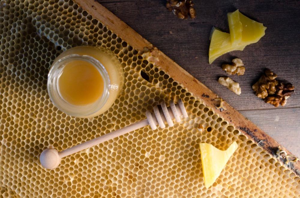 Naběračka na med, medonoska, Pleva