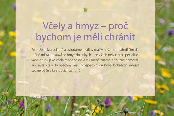 Kniha Zahrada pro včely, Katrin Lugerbauer