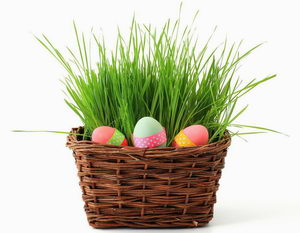 velikonoční dekorace, osení