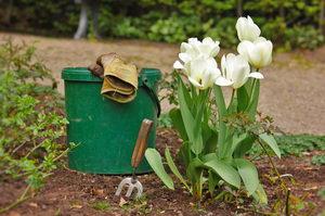 jak zvládnout karanténu, práce na zahradě