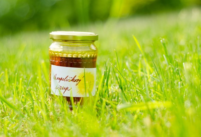 vyroba pampeliskoveho medu postup