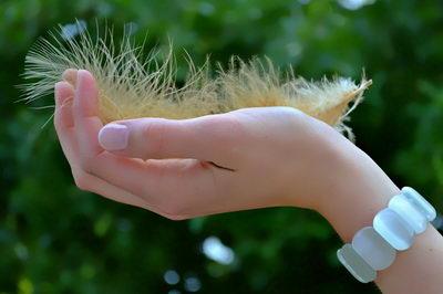Medový krém na ruce