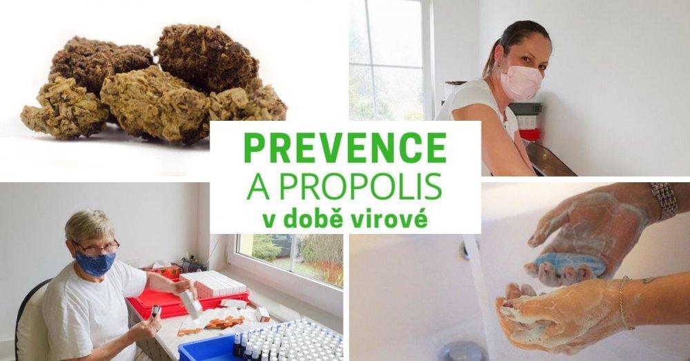 Prevence a propolis v době virové